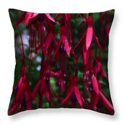 Red Fuchsia Throw Pillow