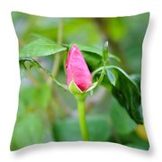 Red Garden Rose Bud Throw Pillow