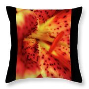 Red Gazer Lily Throw Pillow