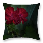 Red Geranium Throw Pillow