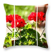 Red Geraniums Triptych Throw Pillow