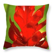 Red Ginger Bud After Rainfall Throw Pillow