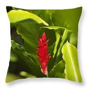 Red Ginger Flower Throw Pillow