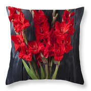 Red Gladiolus In Striped Vase Throw Pillow