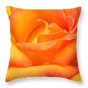 Red Gold Rose Throw Pillow