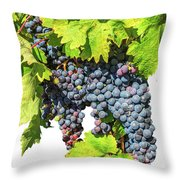 Red Grapes Seasonal Background Throw Pillow