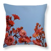 Red Gum Blossoms Australian Flowers Oil Painting Throw Pillow