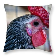 Red Hat Chicken Throw Pillow