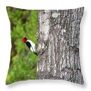 Red Head Bird Throw Pillow