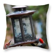 Red Head Wood Peckers On Feeder Throw Pillow