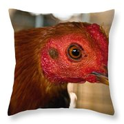 Red Headed Chicken Throw Pillow