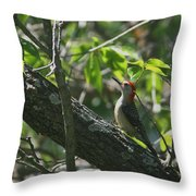 Red Headed Woodpecker Throw Pillow