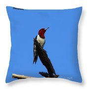 Red Headed Woodpecker On A Snag Throw Pillow