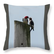 Red Headed Woodpeckers Throw Pillow