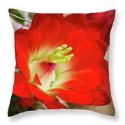 Red Hedgehog Throw Pillow