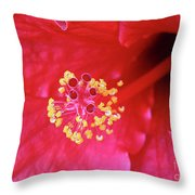 Red Hibiscus 3 Throw Pillow