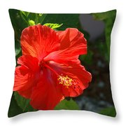 Red Hibiscus II Throw Pillow