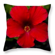 Red Hibiscus - Kauai Throw Pillow