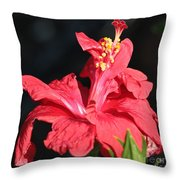 Red Hibiscus Square 2 Throw Pillow