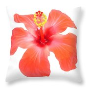 Red Hibiscus Vector Isolated Throw Pillow