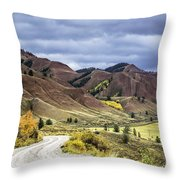 Red Hills Autumn Color Throw Pillow