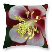 Red Hobbit Columbine 2 Throw Pillow