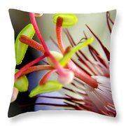 Red Hot Passion Throw Pillow