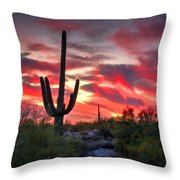 Red Hot Sonoran  Throw Pillow