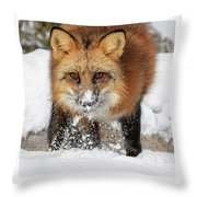 Red Hunter Throw Pillow