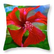 Red Hyacinth In Bourbon Resort Gardens Near Iguazu Falls National Park-brazil  Throw Pillow