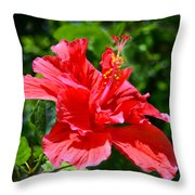 Red II Throw Pillow