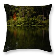 Red In Square Throw Pillow