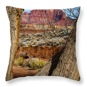 Red In The Distance Throw Pillow