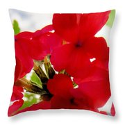 Red In The Garden Throw Pillow