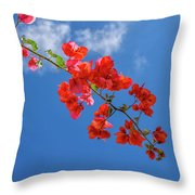 Red In The Sky Throw Pillow