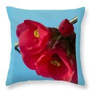 Red Is The Color Of My True Loves Lips Throw Pillow