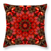 Red Kaleidoscope No. 1 Throw Pillow