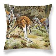 Red Kangaroo Throw Pillow