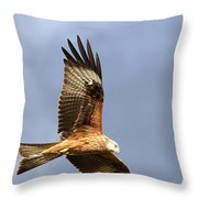 Red Kite Flying Throw Pillow