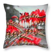 Red Lady Fingers Throw Pillow
