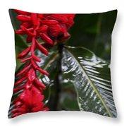 Red Lava Flower Throw Pillow
