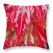 Red Leaf Abstract Throw Pillow