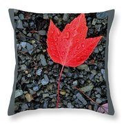 Red Leaf Almost Alone Throw Pillow