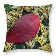 Red Leaf On  Arborvitae Leaves Throw Pillow