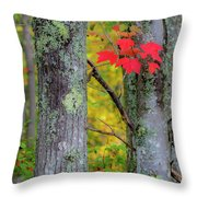 Red Leaves Throw Pillow by Gary Lengyel