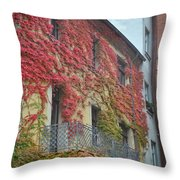Red Leaves Of Fall Throw Pillow
