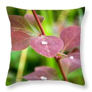 Red Leaves Plant Throw Pillow