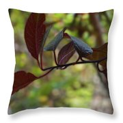 Red Leaves With Frame Throw Pillow