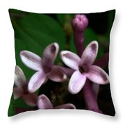 Red Lilac 1 Throw Pillow