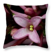 Red Lilac 2 Throw Pillow
